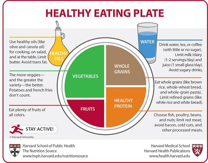 harvard lacteos alimentacion saludable