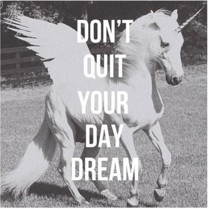 Yo persigo mi unicornio cada día <3
